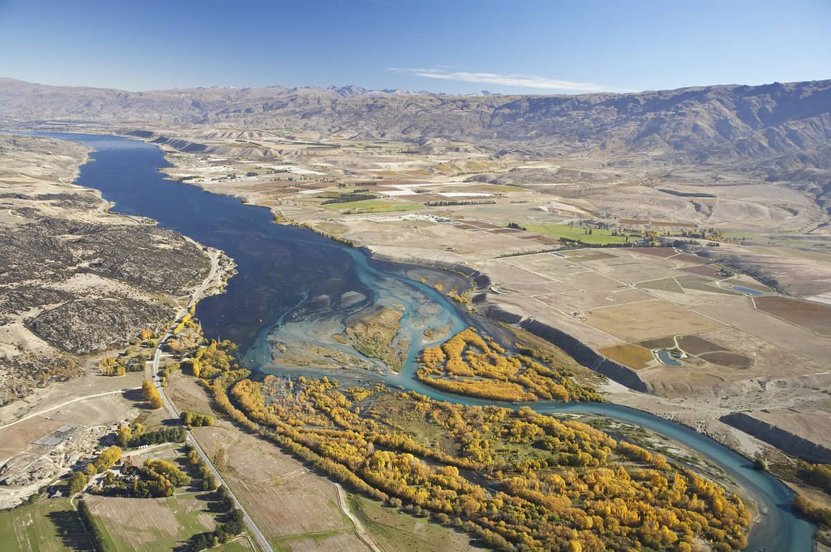 Autumn Willows where the mighty Clutha River enters Lake Dunstan, Central Otago near Ata Mara vineyard.